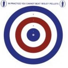 Bisley Red White & Blue Card Targets 14cm x 14cm (50)