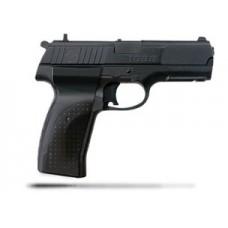 Crosman 1088 Co2 Pellet and Metal BB Gun